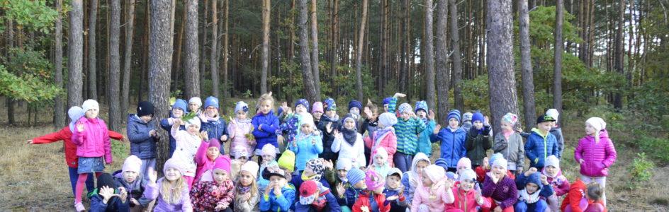 W poszukiwaniu jesieni – Wycieczka do lasu